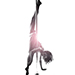 Electrick-pole-dance-Bordeaux-Handstand-split
